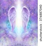 lilac angel wings   beautiful...   Shutterstock . vector #376887040