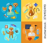 vector veterinary icons set.... | Shutterstock .eps vector #376902490