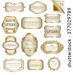 vector white gold framed ... | Shutterstock . vector #377029789