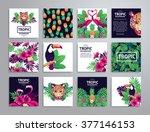 tropical printable set. vector... | Shutterstock .eps vector #377146153