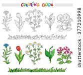 coloring book or page with... | Shutterstock .eps vector #377210998