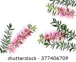 bottle brush flowers or... | Shutterstock .eps vector #377406709