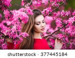 happy beautiful young woman in... | Shutterstock . vector #377445184