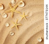 summer background. seashells... | Shutterstock . vector #377473144