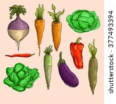 set of vegetables. vector... | Shutterstock .eps vector #377493394