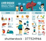 liver infographic elements... | Shutterstock .eps vector #377524966