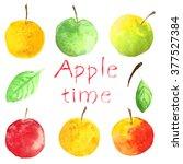 Set Apples. Watercolor Food....