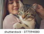 Pets Care.young Woman Holding...
