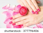 close up of female hands... | Shutterstock . vector #377796406