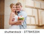 bride and groom wedding... | Shutterstock . vector #377845204