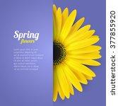 bright spring background design.... | Shutterstock .eps vector #377855920