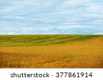 Landscape In The Countryside O...