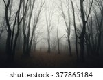 Dark Spooky Forest With Man...