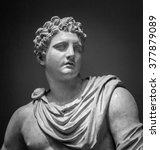 The Ancient Marble Portrait Of...