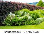 beautiful walled garden | Shutterstock . vector #377894638
