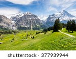 mountains around grindelwald ...