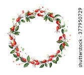 hand drawn wreath with rose hip ... | Shutterstock . vector #377950729