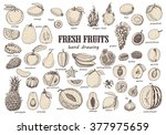 big set with isolated fruits.... | Shutterstock .eps vector #377975659
