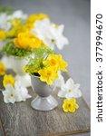 bright narcissus flowers... | Shutterstock . vector #377994670