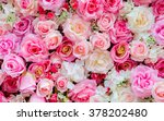 Stock photo soft color roses background 378202480