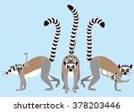 ring tailed lemur | Shutterstock .eps vector #378203446