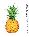 Pineapple.  Isolated On A White ...