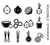Onion  Spring Onions Icons Set