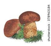 illustration of a mushroom on a ...   Shutterstock .eps vector #378963184