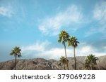palm springs vintage movie...   Shutterstock . vector #379069228