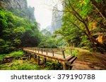 Scenic View Of Wooden Bridge...