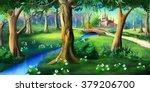 Magic Forest Around The...