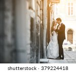 lovely wedding couple kissing... | Shutterstock . vector #379224418