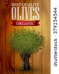 olive label with an olive tree  ... | Shutterstock .eps vector #379254544