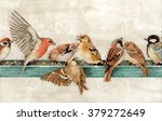 little birds and a feeding... | Shutterstock . vector #379272649