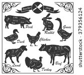 set of animal cuts for butcher... | Shutterstock . vector #379356124
