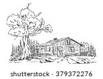 vector    old hut in the... | Shutterstock .eps vector #379372276