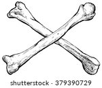 crossed bones   hand drawn... | Shutterstock .eps vector #379390729