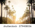 beverly hills street with palm... | Shutterstock . vector #379408036