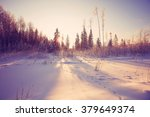 winter cold day fir forest... | Shutterstock . vector #379649374