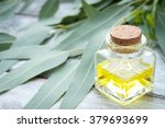 eucalyptus leaves and essential ... | Shutterstock . vector #379693699