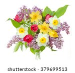 lilac  tulips and narcissus... | Shutterstock . vector #379699513