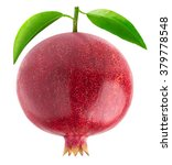 isolated pomegranate. one... | Shutterstock . vector #379778548