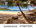 Palm Trees On Beautiful Beach...