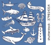 sketch set of marine elements... | Shutterstock .eps vector #379814314