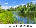 beautiful summer river scene   Shutterstock . vector #379834864