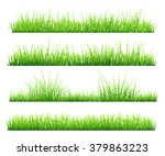 set of green grass  isolated on ... | Shutterstock .eps vector #379863223