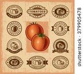 vintage tomato stamps set.... | Shutterstock .eps vector #379905478