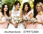 bride with bridesmaids on the... | Shutterstock . vector #379972384