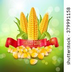 vector background with grains... | Shutterstock .eps vector #379991158