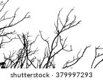 tree branches abstract... | Shutterstock . vector #379997293